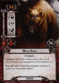 Wild-Bear
